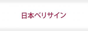 日本ベリサイン株式会社の成功事例