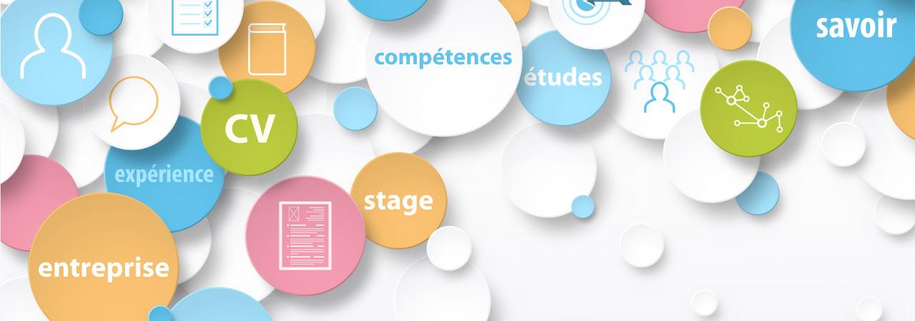 ペンシルの「ウェブコンサルティング」を体験、1dayインターンシップ参加者を募集開始